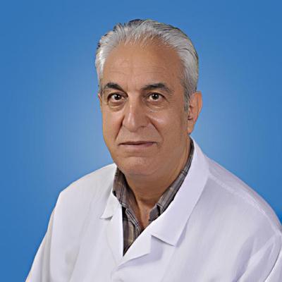 محمدحسین محمدی