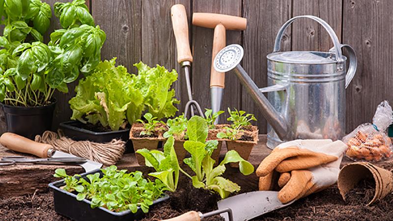 آسم و باغبانی